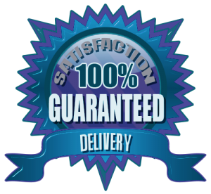 Delivery Seo Tools